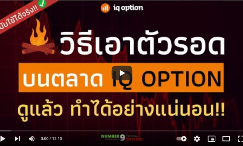 Trade IQ OPTION : How to Survive on the IQ OPTION Market